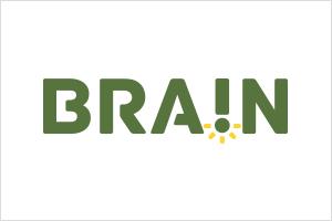 Brain Consultoria e Pesquisa