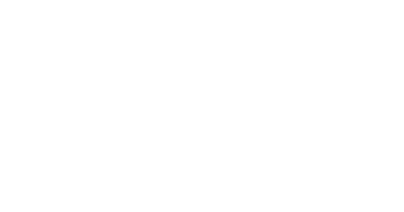 Number of Senior Executives from 65+ countries